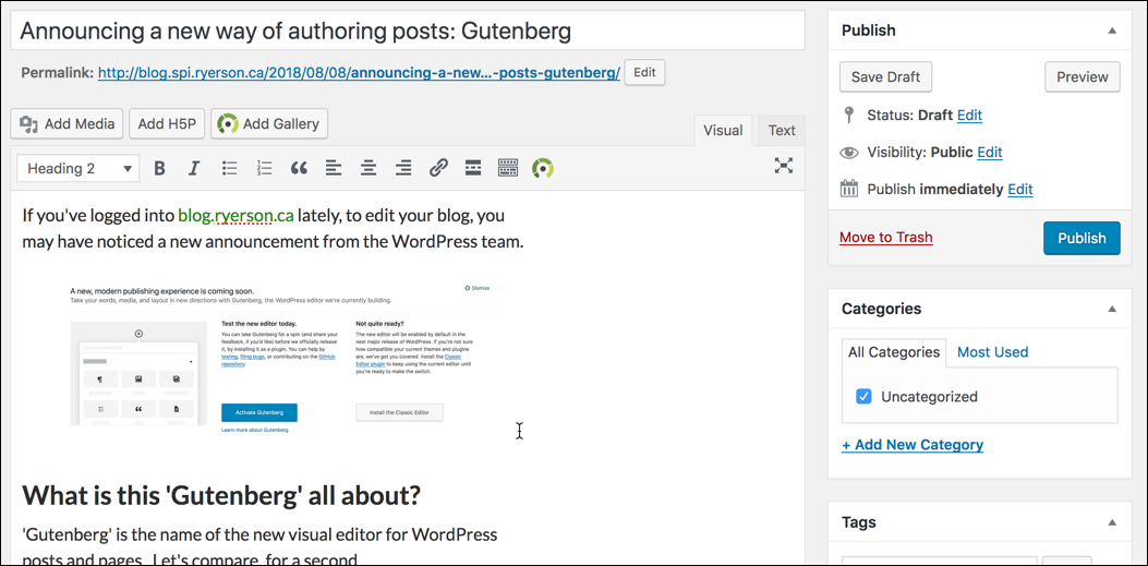 This is a screenshot of the Classic WordPress post editor.
